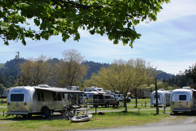 Click image for larger version  Name:Airstream NorCal Rally, Casini Ranch Campground, April 10 - 12, 070.jpg Views:61 Size:186.2 KB ID:78626
