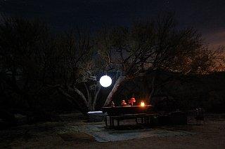 Click image for larger version  Name:DSC_0191 Oriental lantern 2.jpg Views:110 Size:375.6 KB ID:81074