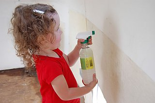 Click image for larger version  Name:Mayahclean2.jpg Views:209 Size:26.7 KB ID:82832