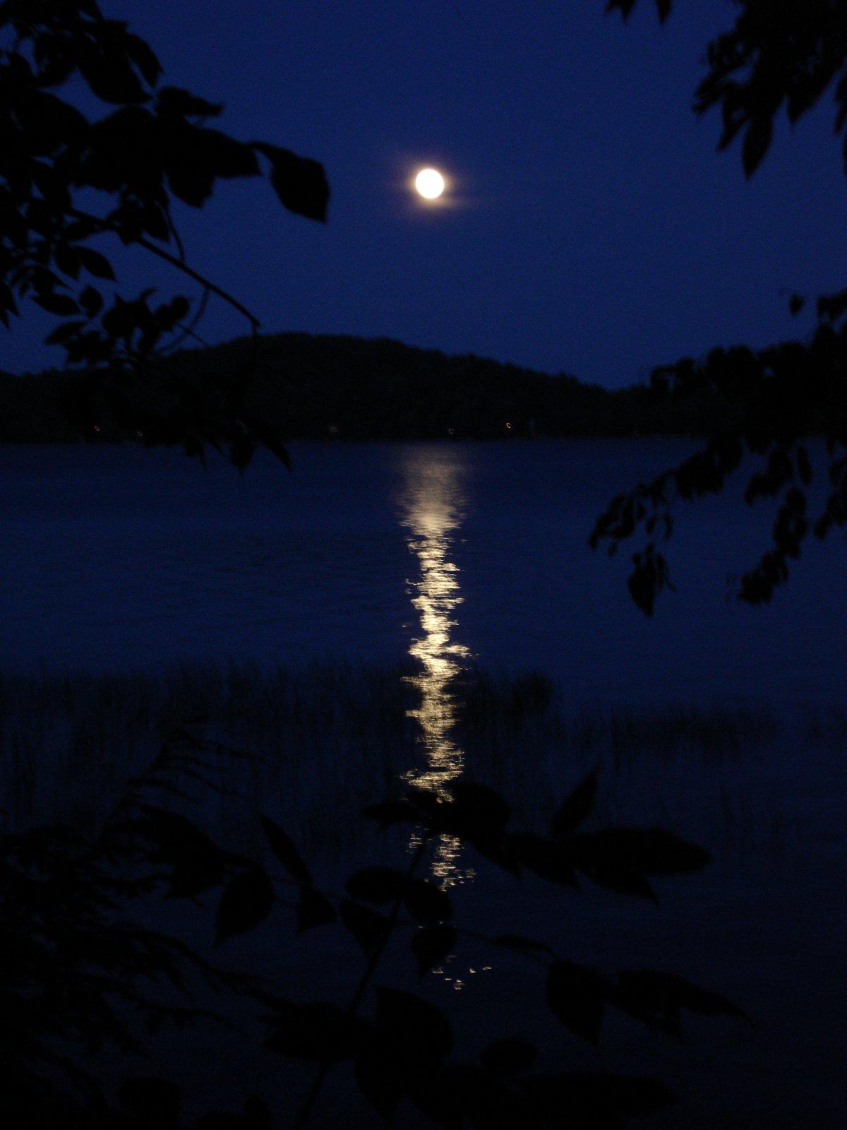 Click image for larger version  Name:Piseco Lake JulyAug 2009 152.jpg Views:84 Size:142.2 KB ID:85150