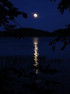 Click image for larger version  Name:Piseco Lake JulyAug 2009 152.jpg Views:92 Size:142.2 KB ID:85150