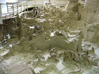Click image for larger version  Name:wooly mammoth 006 [Desktop Resolution].JPG Views:116 Size:236.8 KB ID:88673