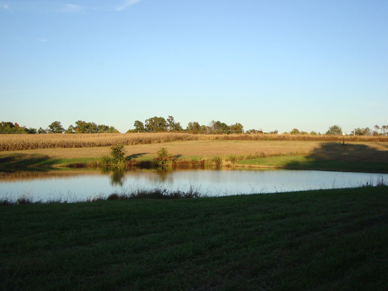 Click image for larger version  Name:fall pond.jpg Views:78 Size:78.5 KB ID:88861