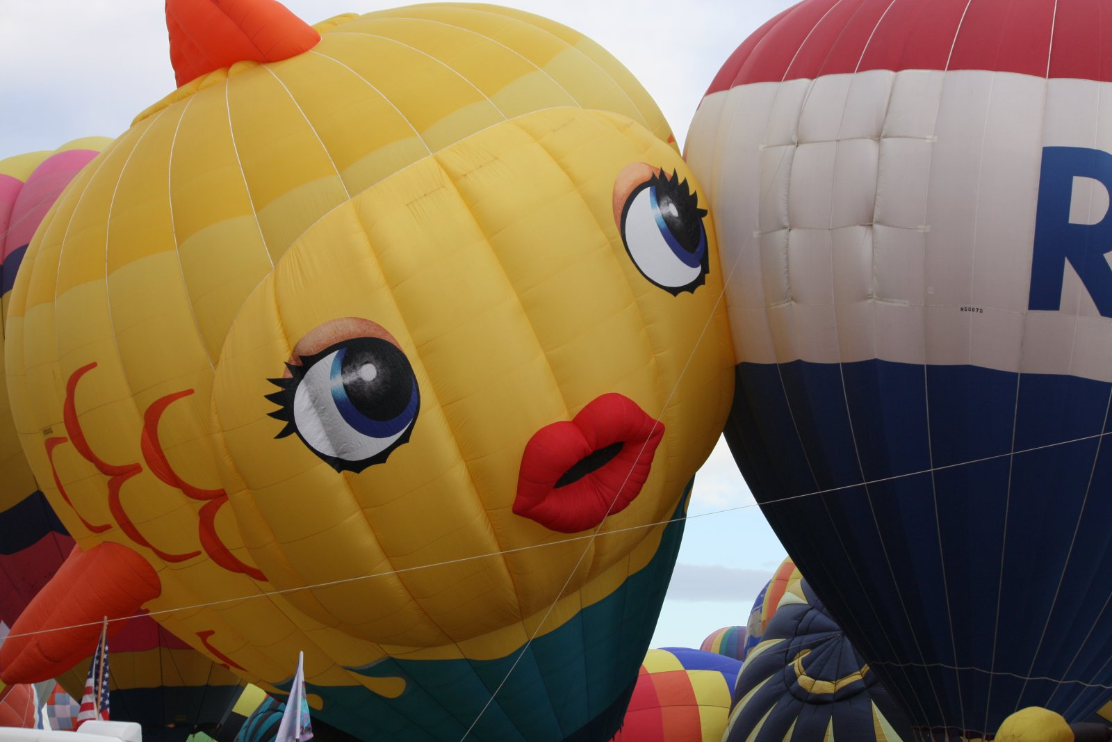 Click image for larger version  Name:Balloon Fiesta 09 033.jpg Views:58 Size:163.4 KB ID:89031