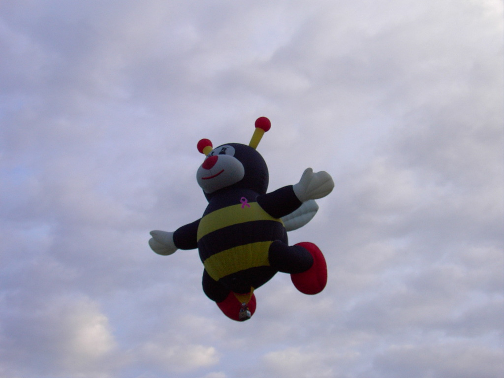 Click image for larger version  Name:2009BalloonFiesta-4 068.JPG Views:59 Size:124.5 KB ID:89080