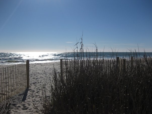 Click image for larger version  Name:Myrtle Beach.jpg Views:130 Size:46.5 KB ID:90387