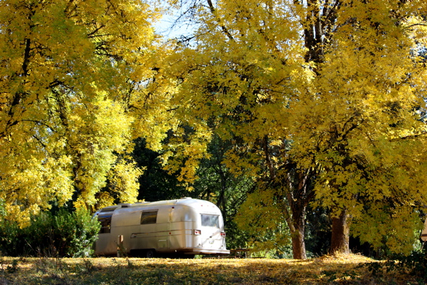 Click image for larger version  Name:fall camping 2.JPG Views:102 Size:272.4 KB ID:90518