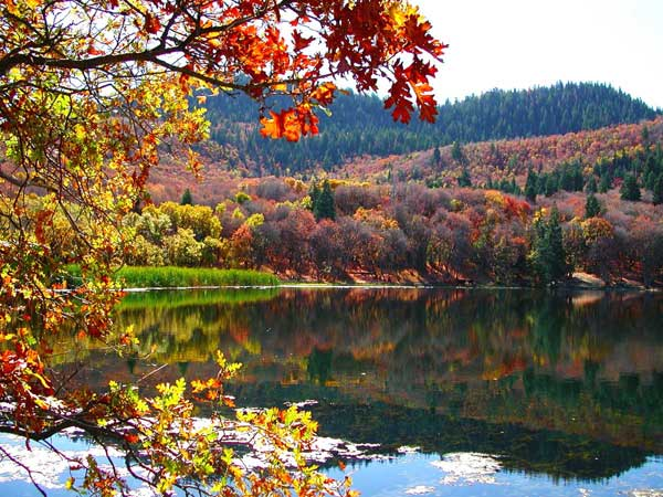 Click image for larger version  Name:Maple Lake.jpg Views:93 Size:69.0 KB ID:9118