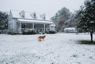 Click image for larger version  Name:Homes with Snow.jpg Views:120 Size:135.4 KB ID:92036