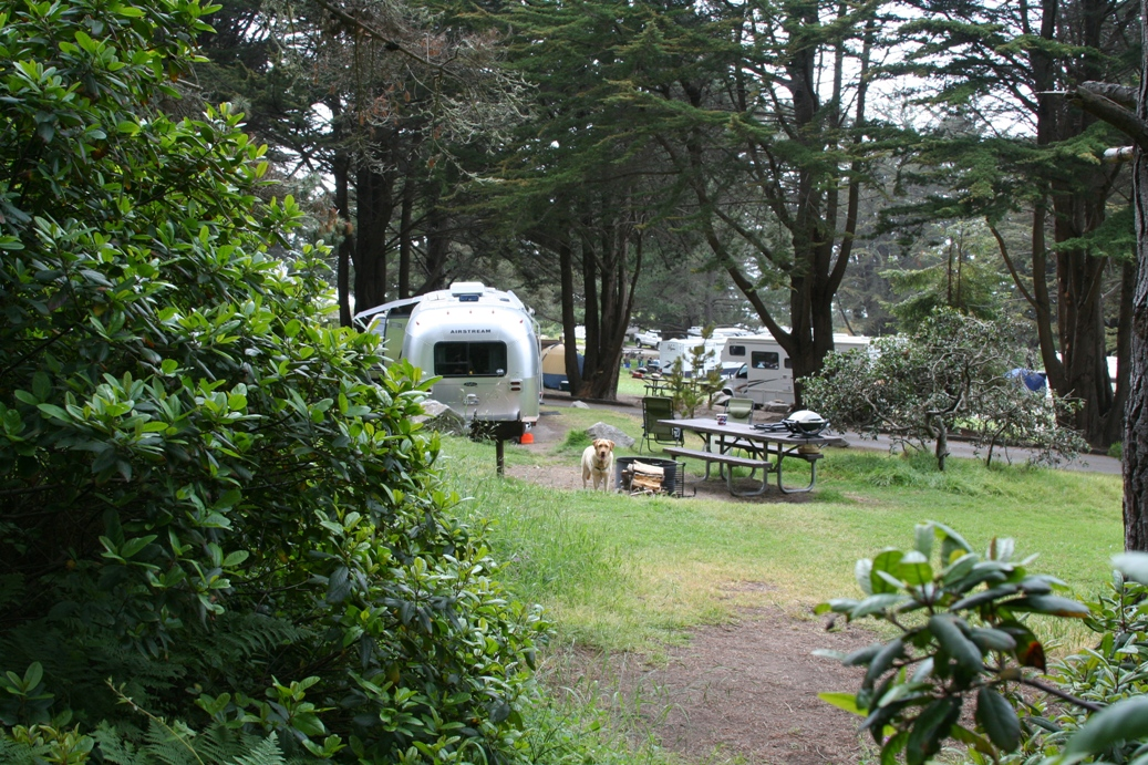 Click image for larger version  Name:Plaskett Creek Camp.JPG Views:74 Size:542.6 KB ID:93505