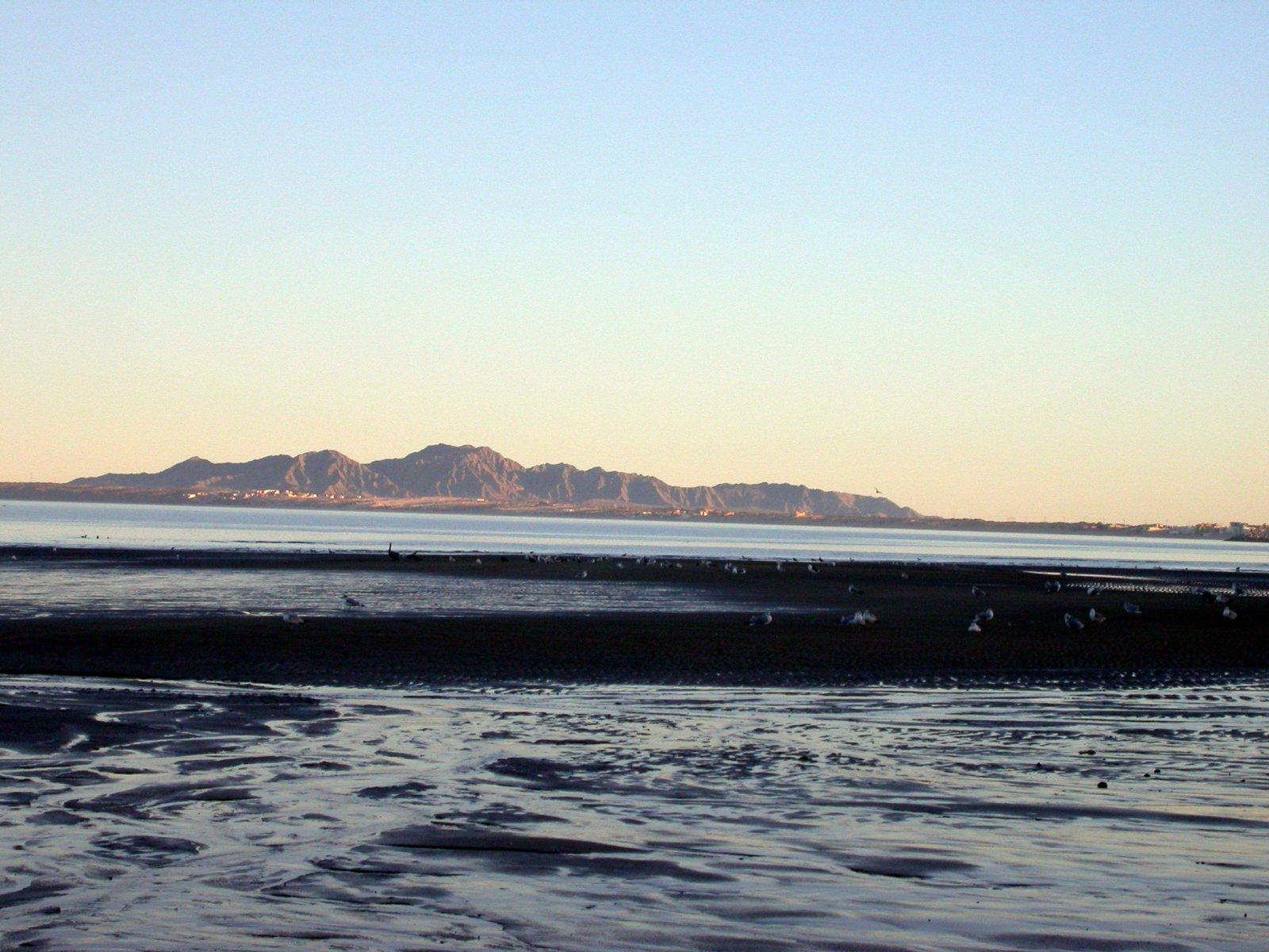 Click image for larger version  Name:Baja 027.jpg Views:97 Size:292.5 KB ID:94844