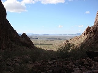 Click image for larger version  Name:palm canyon 3.jpg Views:108 Size:48.2 KB ID:95319