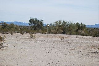 Click image for larger version  Name:greasewood 5.jpg Views:100 Size:52.6 KB ID:95428