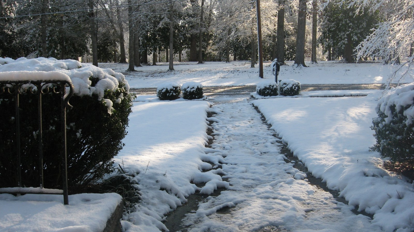 Click image for larger version  Name:Snow~021310.jpg Views:79 Size:342.7 KB ID:96102