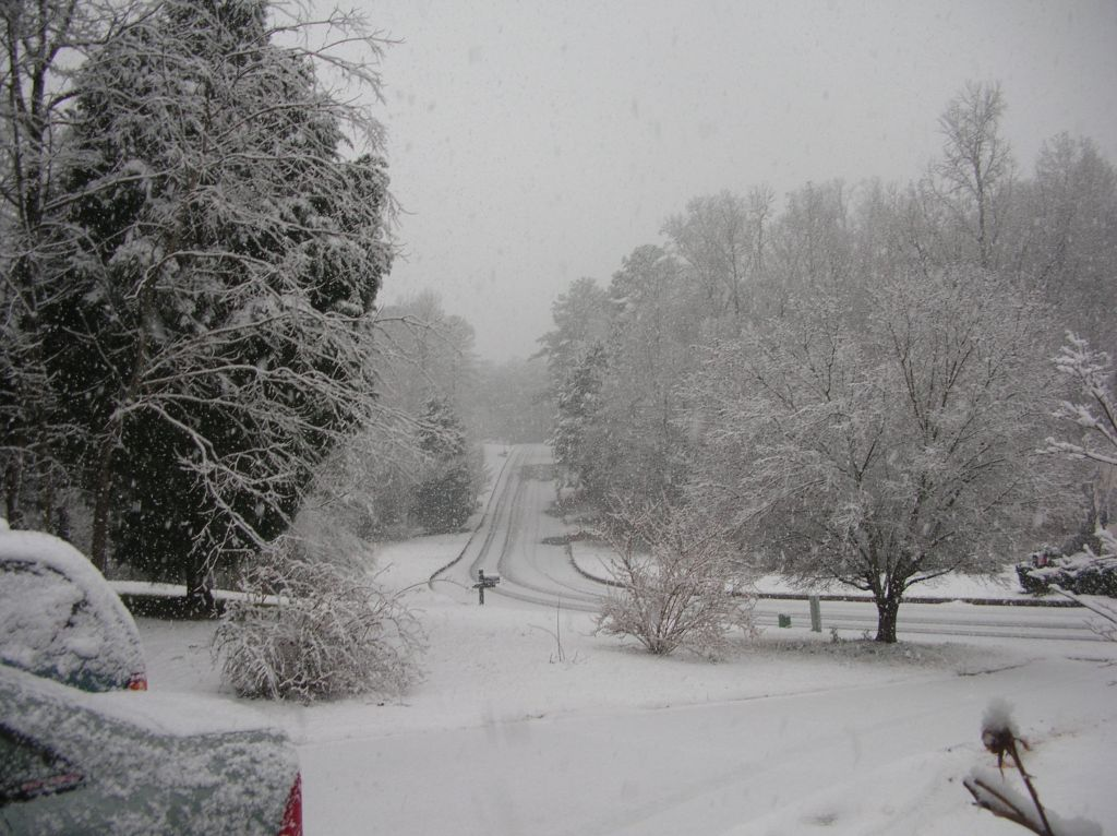 Click image for larger version  Name:Snow 6.jpg Views:68 Size:168.1 KB ID:96866
