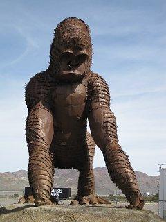 Click image for larger version  Name:Vegas 2010 049.JPG Views:98 Size:97.3 KB ID:97207