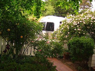 Click image for larger version  Name:Roses and Airstream 04:07jpg.jpg Views:145 Size:313.1 KB ID:97357