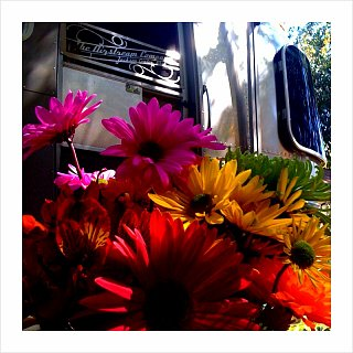 Click image for larger version  Name:AS Flowers.jpg Views:91 Size:170.0 KB ID:97449