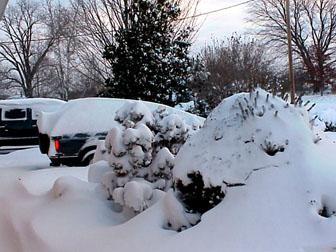 Click image for larger version  Name:Blazer December 23_BRR_2.jpg Views:105 Size:36.4 KB ID:9850