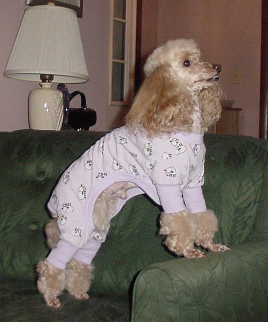 Click image for larger version  Name:Pajamas 04 Cropped.jpg Views:105 Size:68.3 KB ID:9919