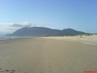 Click image for larger version  Name:NB beach.jpg Views:444 Size:25.2 KB ID:1341