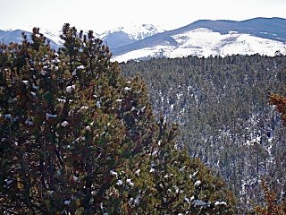 Click image for larger version  Name:High Road Mts.JPG Views:509 Size:246.2 KB ID:1442