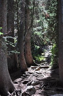 Click image for larger version  Name:Trails upward.JPG Views:4309 Size:198.4 KB ID:1874