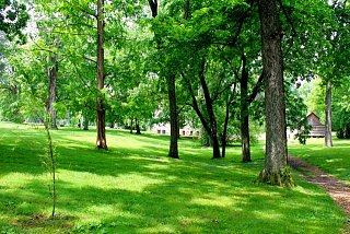 Click image for larger version  Name:Belle Mead grounds.jpg Views:134 Size:99.0 KB ID:3801