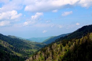 Click image for larger version  Name:Newfound Gap rd view.jpg Views:164 Size:39.3 KB ID:3810