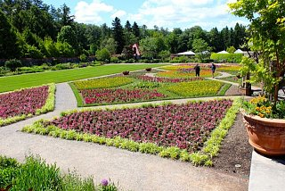 Click image for larger version  Name:Biltmore gardens.jpg Views:188 Size:94.1 KB ID:3823
