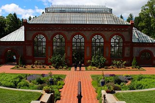 Click image for larger version  Name:Biltmnore greenhouse best.jpg Views:173 Size:72.3 KB ID:3824